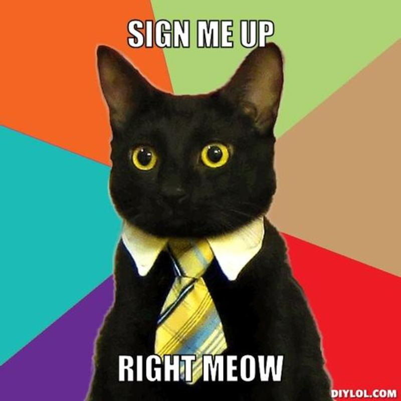 Name:  resized_business-cat-meme-generator-sign-me-up-right-meow-4a528b.jpg Views: 358 Size:  44.6 KB